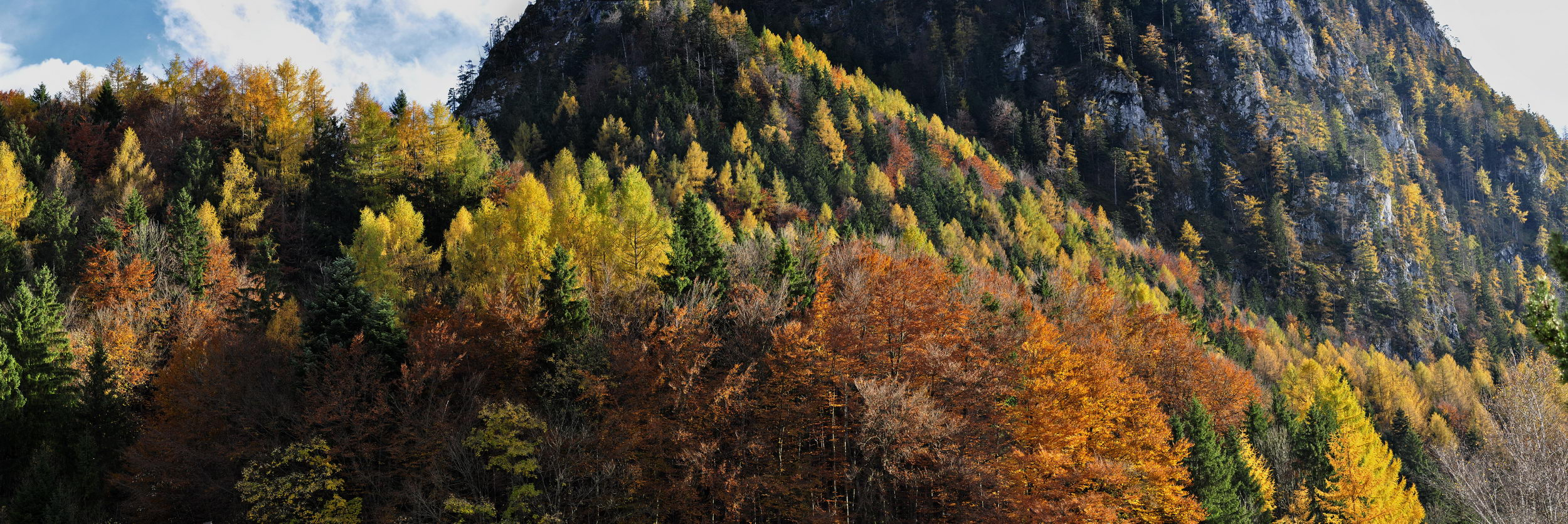 Pano_herbst